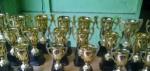 Piala Logam