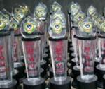 Trophy Resin